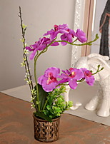 1 1 Branch Plastic / Others Orchids Tabletop Flower Artificial Flowers