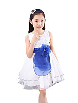Girl's Casual/Daily Solid Dress,Chiffon Summer Sleeveless