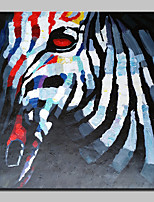 100% Hand-Painted Zebra Animal Oil Painting On Canvas Modern Abstract Wall Art Picture For Home Decoration Ready To Hang