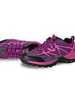 Women's Athletic Shoes Spring / Fall Comfort Tulle Outdoor Flat Heel Lace-up Purple Hiking