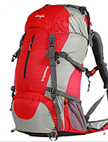 50 L Backpack / Hiking & Backpacking Pack / Laptop Pack / Cycling BackpackCamping & Hiking / Climbing / Leisure Sports / School /