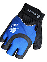 Luvas Luvas Esportivas Todos Luvas de Ciclismo Primavera / Verão / Outono Luvas para CiclismoAnti-Derrapagem / Capilaridade / Protecção /
