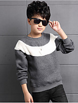 Boy Casual/Daily Solid Hoodie & Sweatshirt,Cotton / Rayon Winter / Spring / Fall