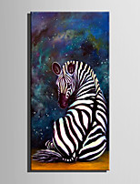 E-HOME Stretched LED Canvas Print Art Zebra Under The Stars LED Flashing Optical Fiber Print One Pcs