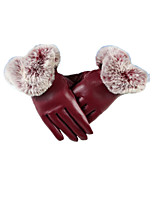 Lady U Type Autumn Winter Touch Screen Gloves