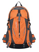 35 L Backpack / Hiking & Backpacking Pack Camping & Hiking / Traveling Outdoor Multifunctional Orange Terylene