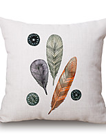 Pillow CaseFloral / Novelty Euro / Modern/Contemporary