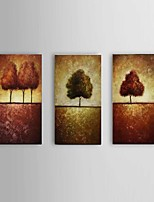 Handpainted Tree Scenery oil Paintings Wall Art Home Decor Stretchered Frame Ready to Hang