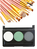ShadowMakeup Brushes Wet Eyes Coloured gloss / Long Lasting / Concealer China Others