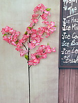 1 1 Branch Dried Flower / Others Sakura / Others Floor Flower Artificial Flowers