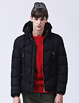 Men's Regular Padded Coat,Simple Plus Size / Casual/Daily / Formal Solid-Polyester Polyester Long Sleeve StandBlue / Red / Black / Green
