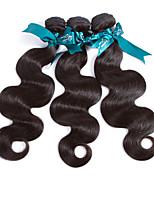 Человека ткет Волосы Малазийские волосы Естественные кудри 12 месяцев 3 предмета волосы ткет