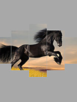 Tela de impressão Paisagem Animal Moderno Clássico,5 Painéis Tela Qualquer Forma Impressão artística Decoração de Parede For Decoração