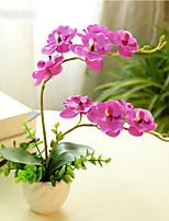 1 Ramo Flôr Seca Flor de Mesa Flores artificiais