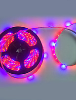1PCS 5M 300x5050SMD 72W Red Blue LED Plant Growth Lights
