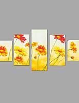 HD Print Beautiful Sun Flower Painting Wall Art 5pcs/set Home Office Decor (No Frame)