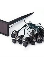 Pony schwarz Kunststoff warmweißes Licht Lichterketten