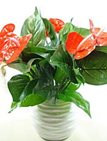 1 Branch Plastic Others Tabletop Flower Artificial Flowers Anthurium Green Planted