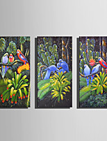 E-HOME Stretched Canvas Art The Parrot in The Grove Decoration Painting One Pcs