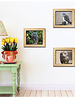 3D Fake Picture Frames The Owl Creative Triptych Sitting Room The Bedroom Decorates A Wall Post