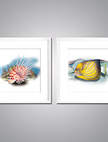 Canvas Prints Fish Picture Print on Canvas Animal Canvas Art with White Frame  for Wall Decoration