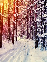 Art Deco 3D Wallpaper For Home Contemporary Wall Covering  Canvas Material Adhesive required Mural Sunset Forest White Snow XXXL(448*280cm)