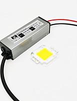 Zdm 1group 50w 4500lm lampe témoin lumineuse à lumière intégrée avec 50w 1500ma 10c5b led source de courant à courant constant (sortie DC