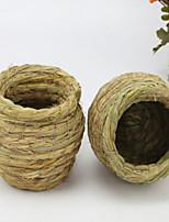 птичьи гнезда соломенно-желтый