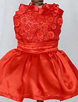 Собаки Платья Одежда для собак Лето Принцесса Милые Мода На каждый день Красный Синий Хаки