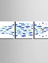 MINI SIZE E-HOME The Blue Fish Clock in Canvas 3pcs