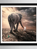 Пейзаж Животные Холст в раме Набор в раме Предметы искусства,ПВХ материал Черный Коврик входит в комплект с рамкой For Украшение дома