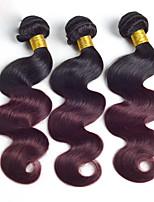 A Ombre Cheveux Péruviens Ondulation naturelle 6 Mois 3 Pièces tissages de cheveux