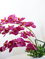 1 Branch Plastic Orchids Tabletop Flower Artificial Flowers