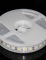 1m 60 luzes 2700k levou luzes correia de luz impermeável patch (luz branca quente)