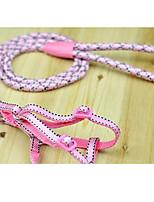 Dog Leash Adjustable/Retractable Training Rainbow Nylon from 2 Batch