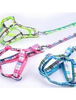 Dog Leash Adjustable/Retractable Training  Nylon  Stainless Steel