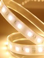 1m 60 luzes 2700k luzes led com invólucro impermeável de silicone (luz branca quente)