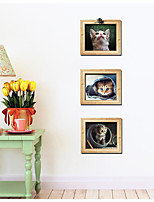 3D Fake Photo Frame Cat Creative Triptych Sitting Room The Bedroom Decorates A Wall Post