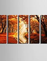 E-HOME Stretched Canvas Art Landscape in Late Autumn Decoration Painting Set Of 5