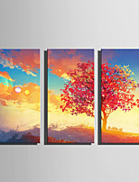 E-HOME Stretched Canvas Art The tree Under The Clouds Decoration Painting Set Of 3