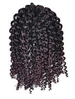 Bouclé Afro Kinky Tresses Extensions de cheveux Kanekalon Cheveux Tressée