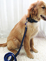 Cat Dog Collar Leash Adjustable/Retractable Breathable Running Safety Training Solid Fabric