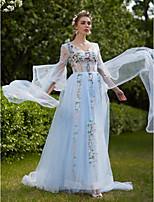 Formeller Abend Kleid - Transparent A-Linie V-Ausschnitt Hof Schleppe Tüll mit Applikationen Bandverzierungen
