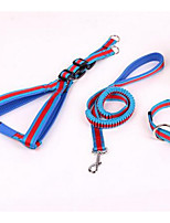 Dog Leash Adjustable/Retractable Training  Nylon  Stainless Steel