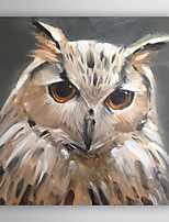 Hand-Painted  Abstract Owl by Knife  Canvas Oil Painting With Stretcher For Home Decoration Ready to Hang