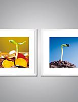 Affiche encadrée Nature morte A fleurs/Botanique Moderne Réalisme,Deux Panneaux Toile Carré Imprimer Art Décoration murale For Décoration