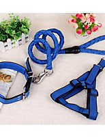 Dog Leash Adjustable/Retractable Training Rainbow Nylon