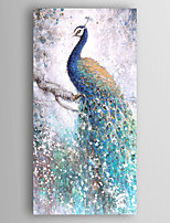 Hand-Painted  Abstract Peacock Oil Painting With Stretcher For Home Decoration Ready to Hang