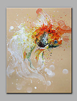 Hand-Painted Animal The Goldfish  Ready To Hang  Modern One Panel Canvas Oil Painting For Home Decoration