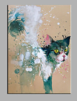 Hand-Painted Animal The Cat  Ready To Hang  Modern One Panel Canvas Oil Painting For Home Decoration